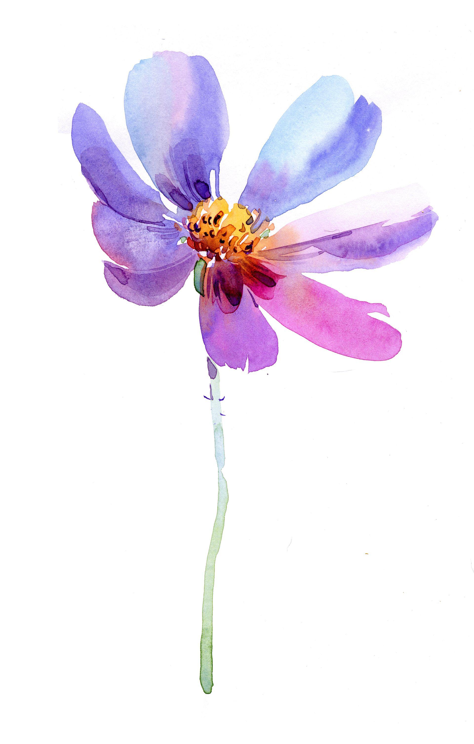 Floarea Băiețelului